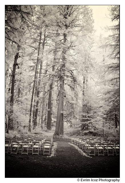 Camp Colton Wedding