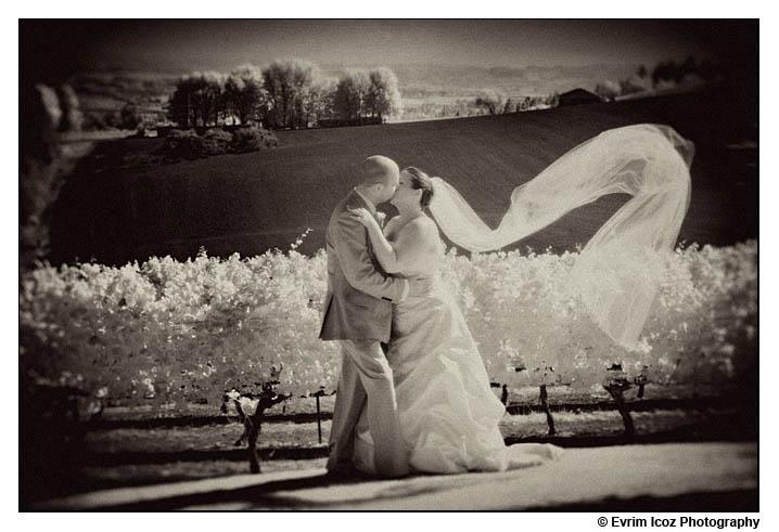 wine country farms wedding vineyard